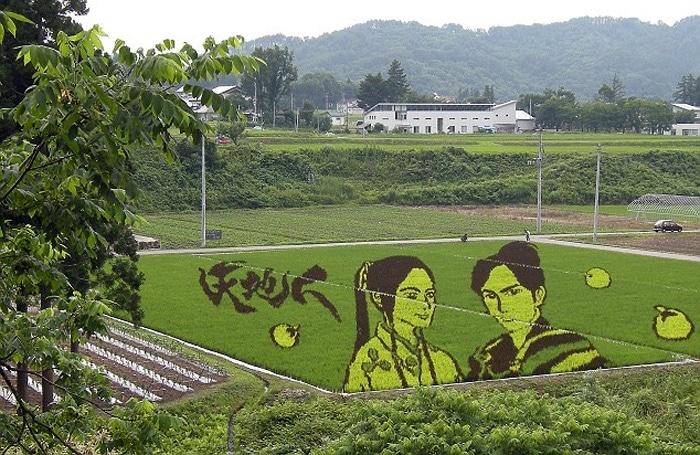 rice art mediums
