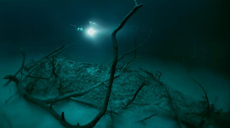 Underwater River Cenote Angelita Anatoly Beloshchin