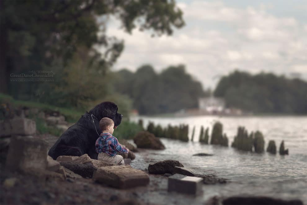 Andy Seliverstoffs Charming Photos Of Little Kids And Their Big Dogs - Tiny children and their huge dogs photographed in adorable portraits by andy seliverstoff