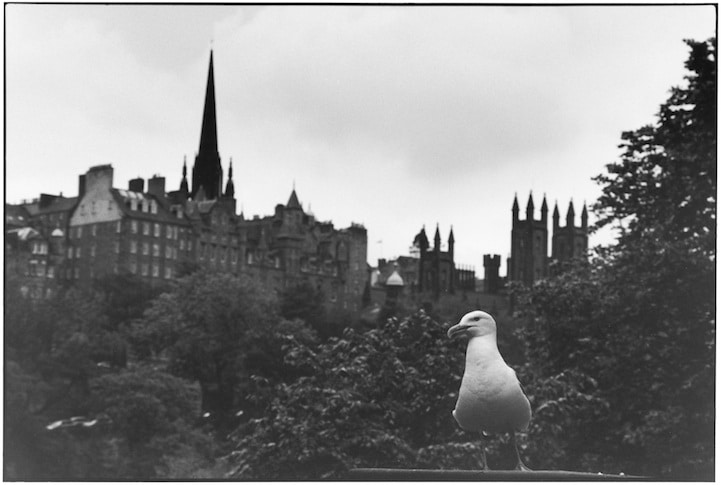 SCOTLAND. 2011.