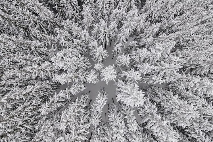 Kacper Kowalski aerial photography nature