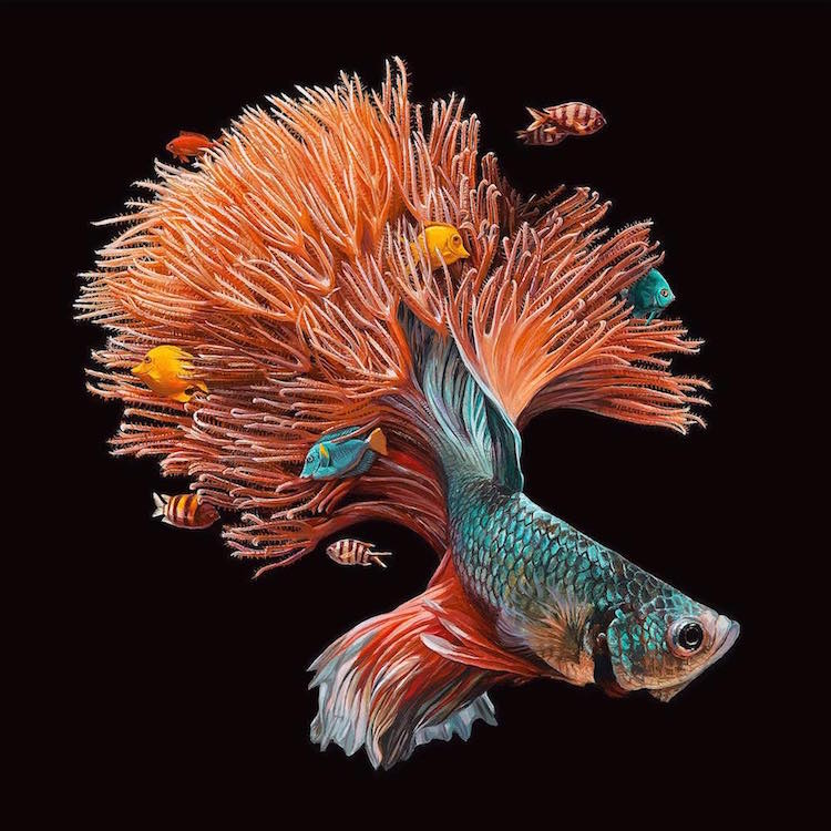 lisa ericson fish art painting
