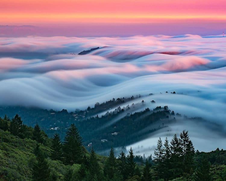 nicholas steinburg fog photography