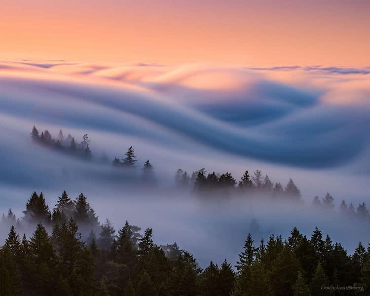 nicholas-steinburg-fog-photography-3