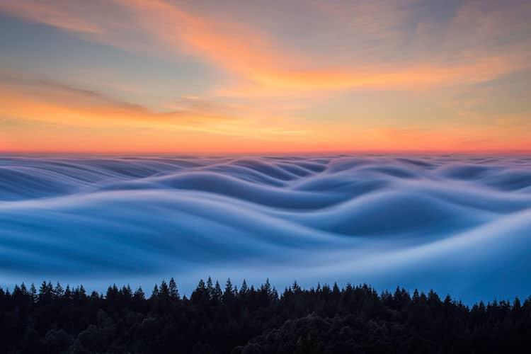 nicholas-steinburg-fog-photography-5