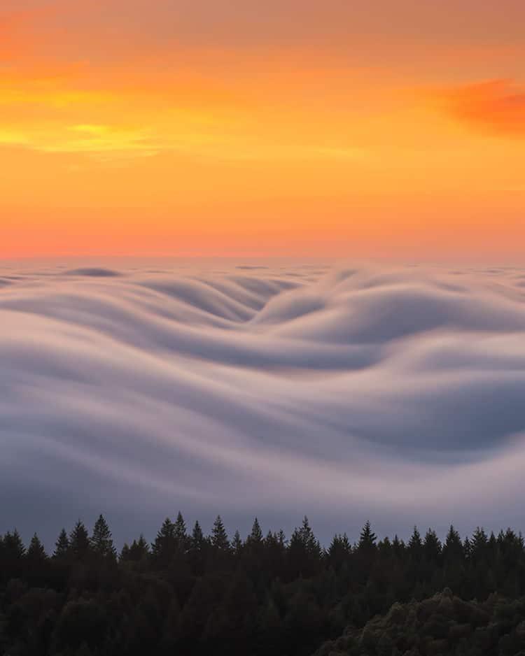 nicholas-steinburg-fog-photography-7