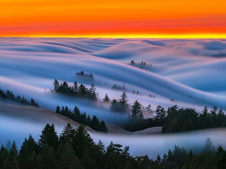 nicholas-steinburg-fog-photography-8