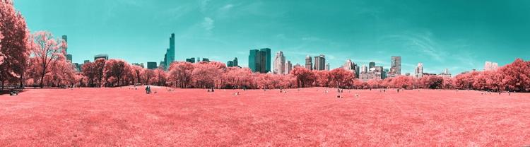 #InfraredNYC by Paolo Pettigiani