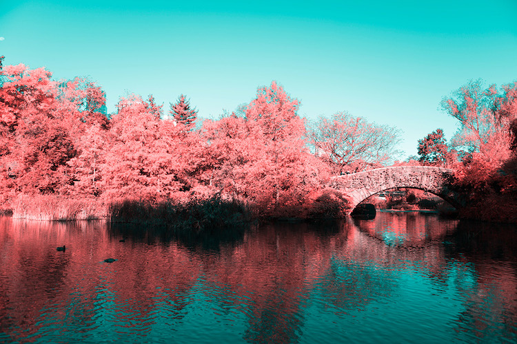 infrared photography new york paolo pettigiani