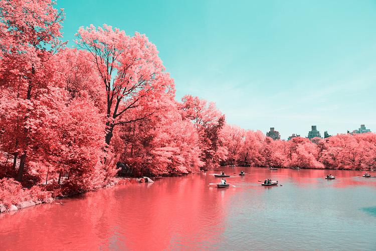 infrared photography new york paolo pettigiani