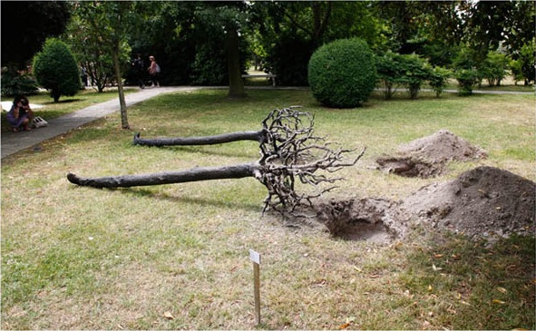 yoan capote uprooted tree sculpture