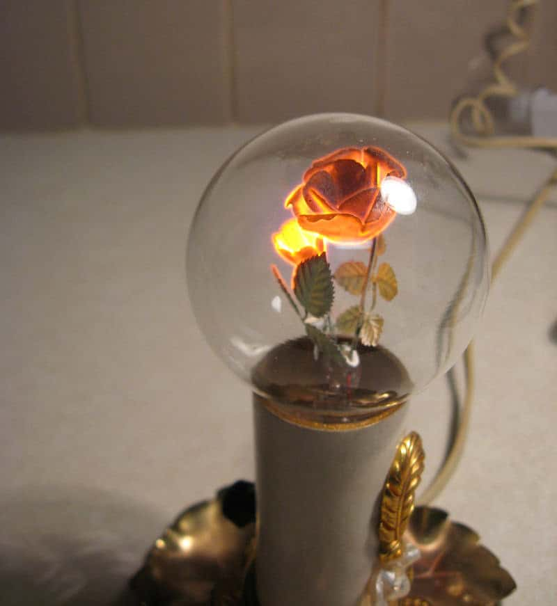 Aerolux rose light bulb
