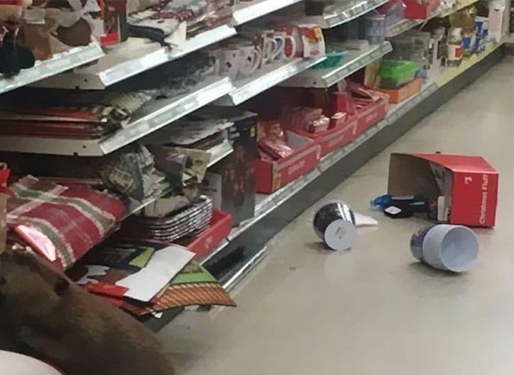 beaver-dollar-store-christmas-tree-shopping-4