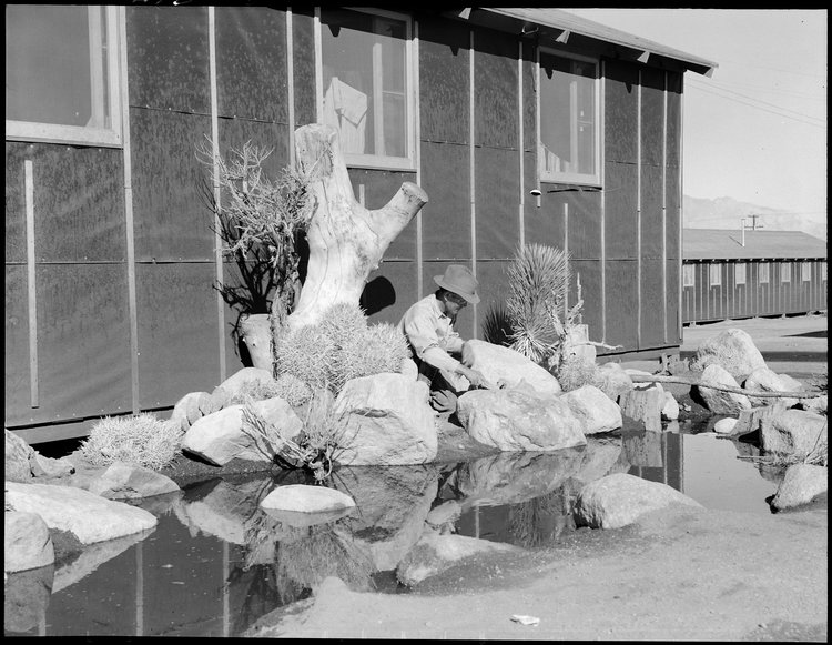 dorothea lange japanese internment camps