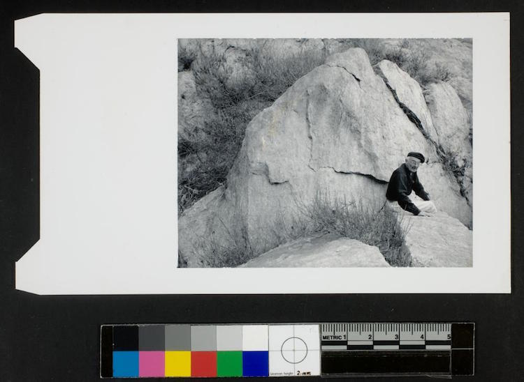 george eastman museum digitized collection photography