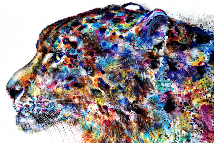 emily tan animal paintings rainbow