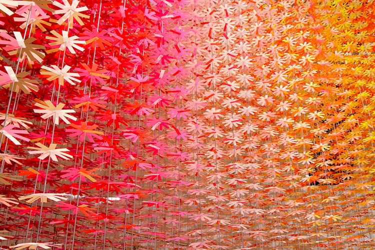 emmanuelle moureaux tokyo paper flowers