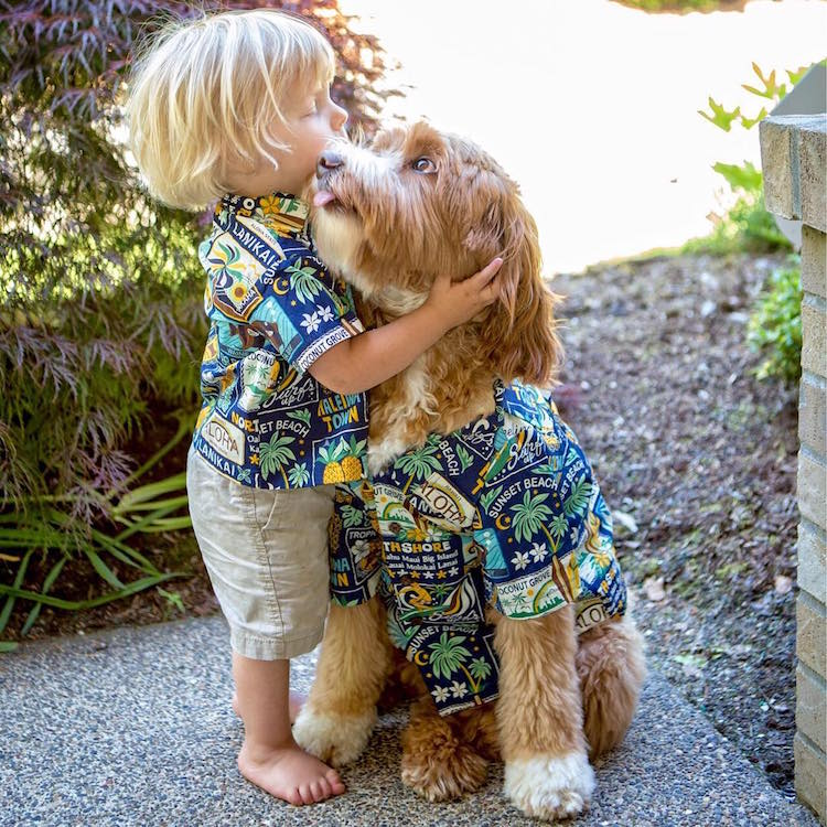 reagandoodle-dog-and-boy-16