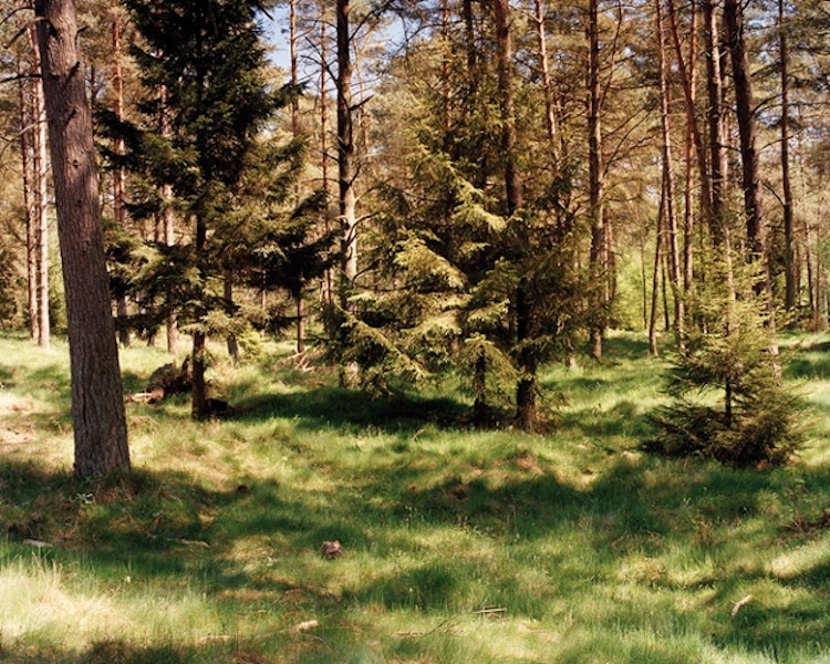 simon-menner-camouflage-extended-12
