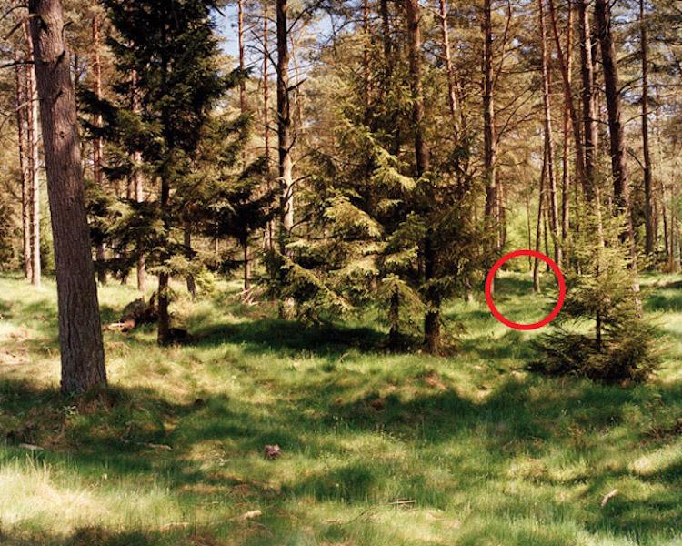 simon-menner-camouflage-extended-13