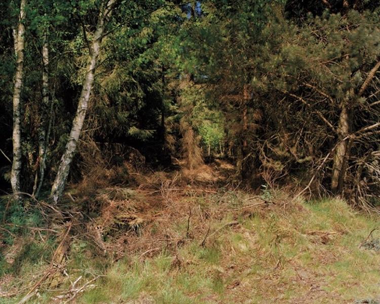 simon-menner-camouflage-extended-6