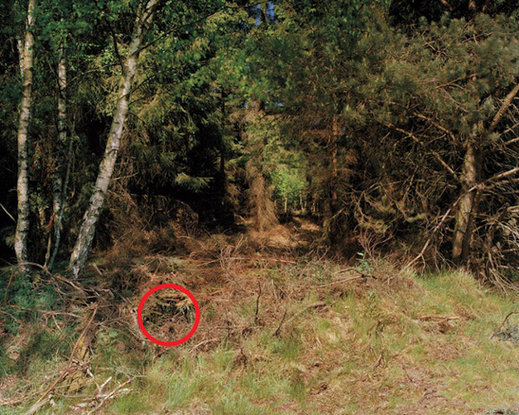 simon-menner-camouflage-extended-7