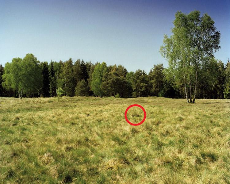 simon-menner-camouflage-extended-9