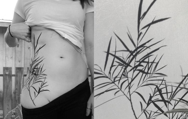 tedd hucks plant shadow tattoos