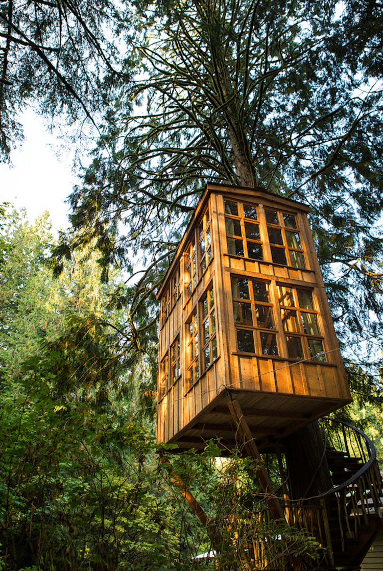 treehouse-point-10