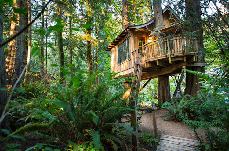treehouse-point-12