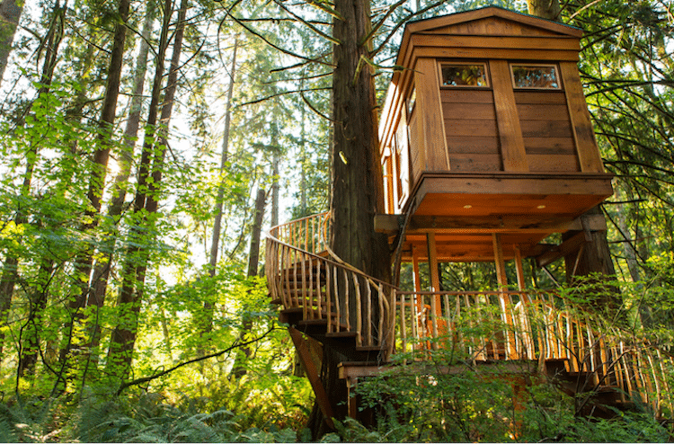 treehouse-point-6