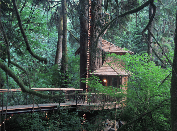 treehouse-point-8