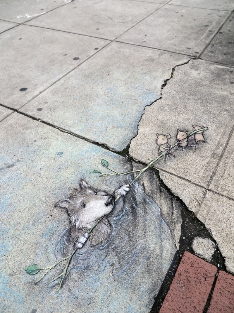 3d art david zinn anamorphic art chalk art