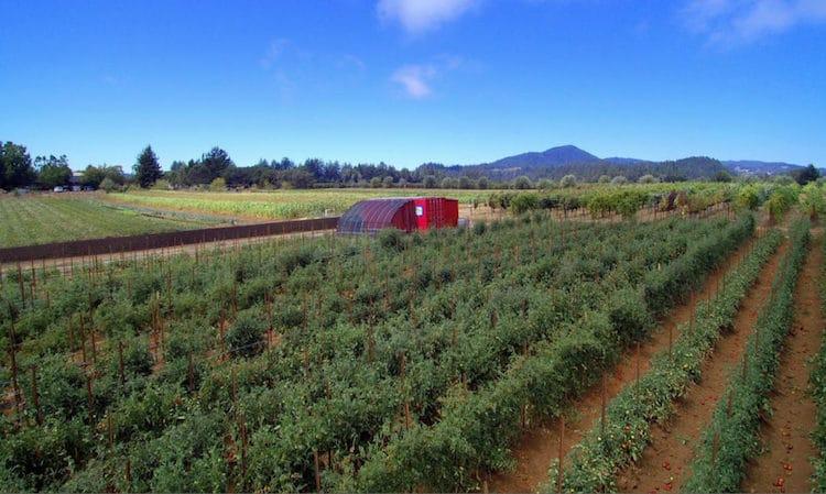 solar power sustainable food farm monitor app