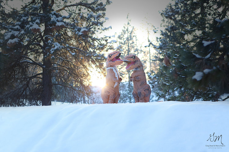 T. Rex Engagement Photo Shoot Proves Love Isn't Exctinct