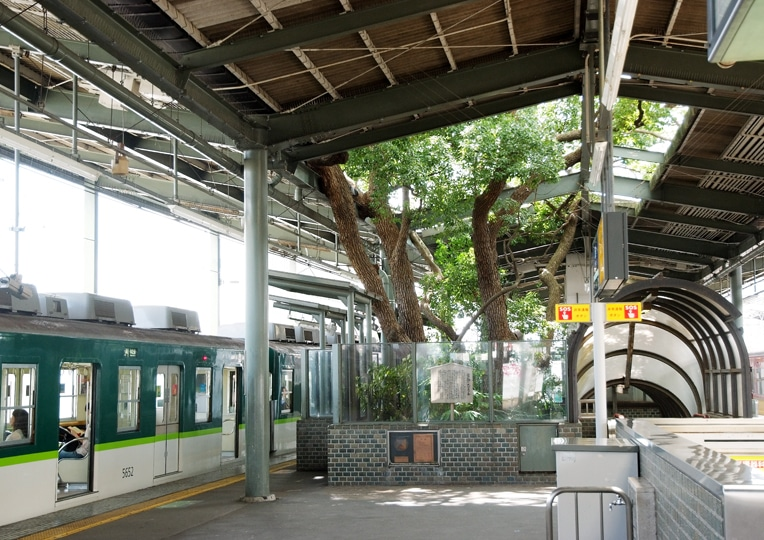 odd architecture Kayashima Station osaka camphor tree
