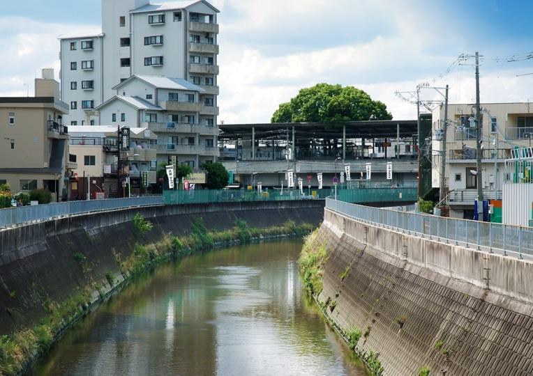 odd architecture Kayashima Station osaka camphor tree