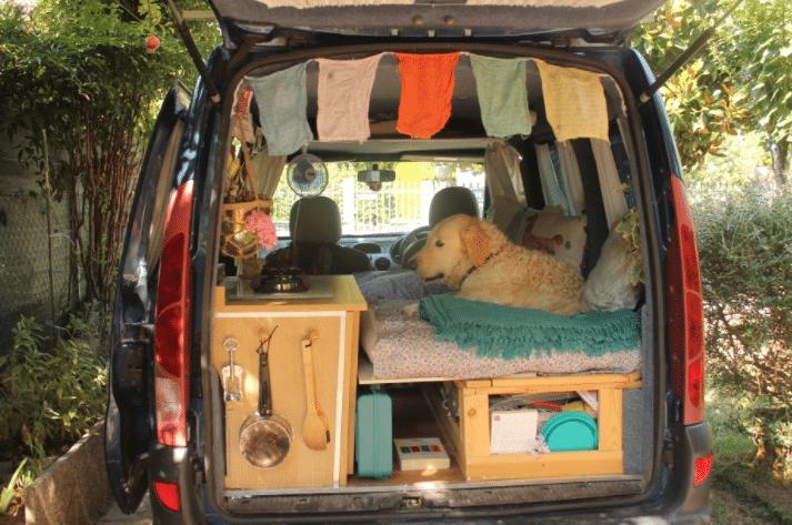 pamthevan91 pam the van restoration marina dog travel