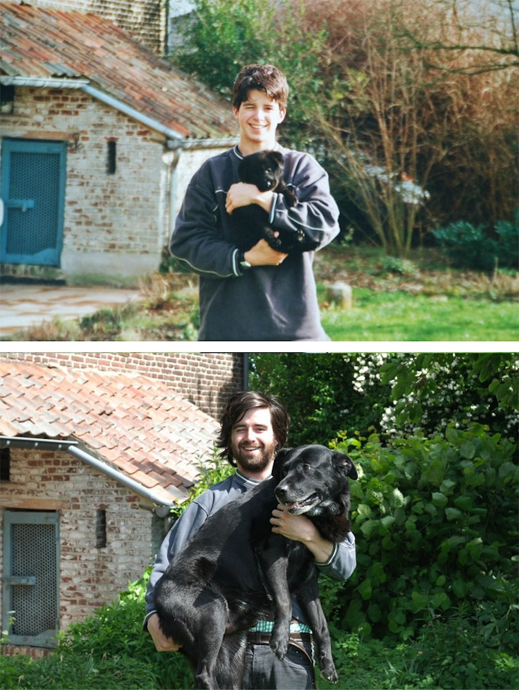 Then and Now Puppies Growing Up Into Dogs