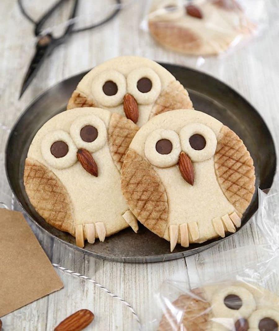 owl cookies fun animal cookies