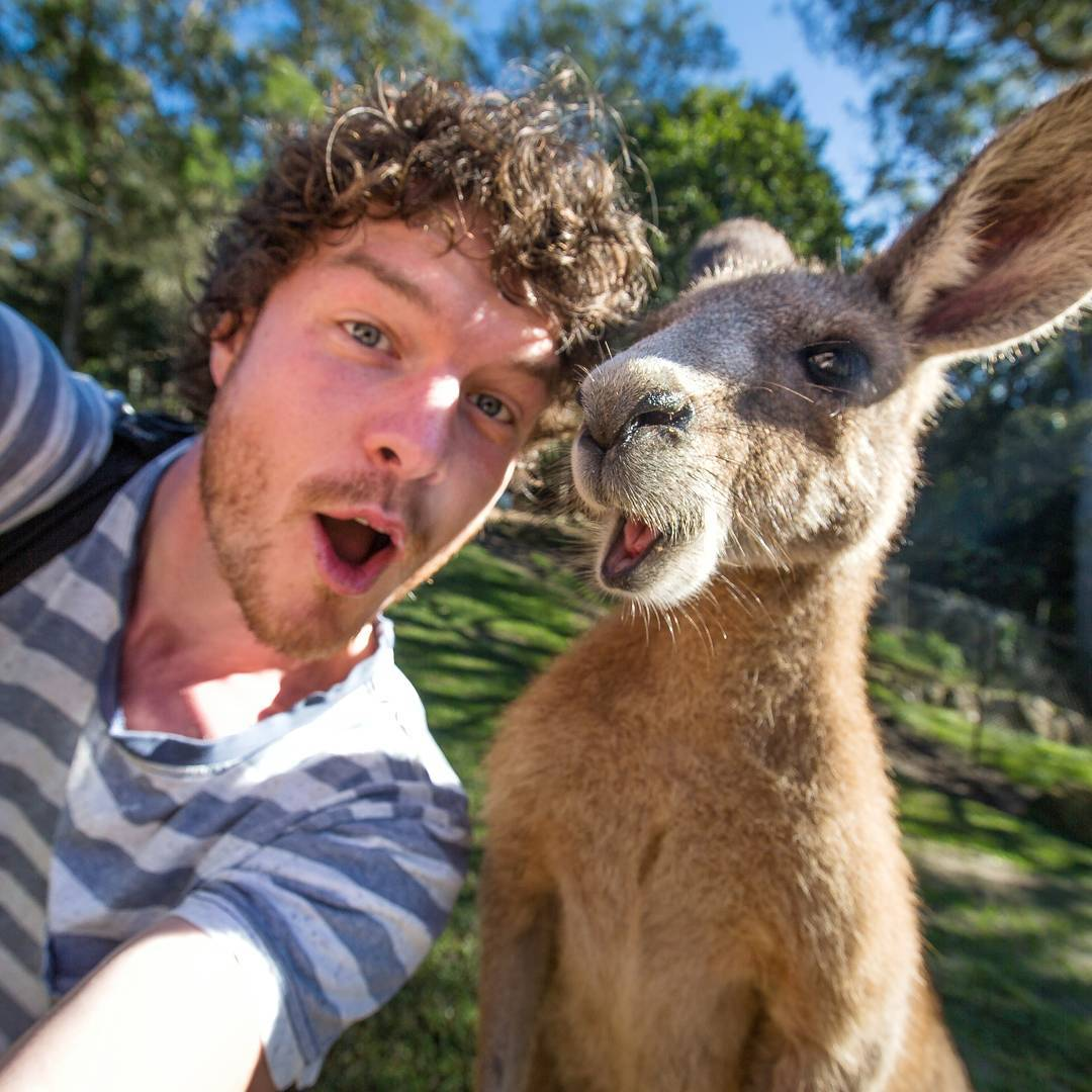 "Allan Dixon, the ""Animal Whisperer"" who takes the best selfies"