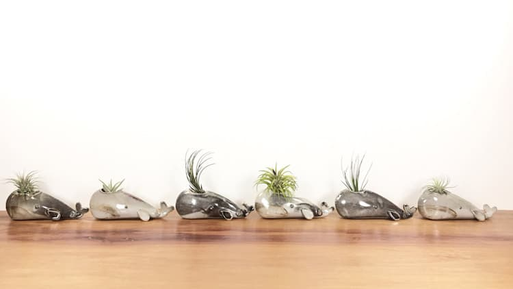 whale animal air plant vases Yoshiko Kozawa studio giverny etsy plants