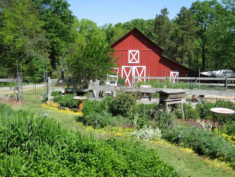 Bluebird Hill Farm is Giving Away Their Land for a 200-Word Essay