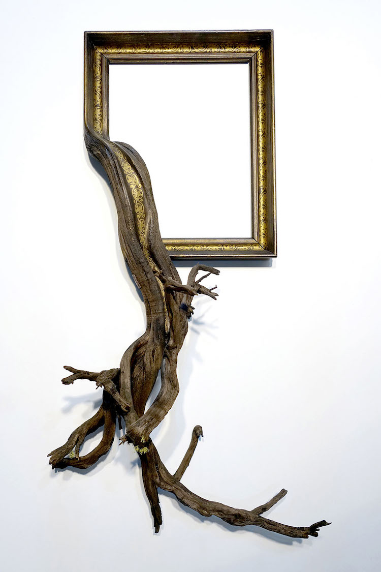 Fusion frames breath new life into ordinary decor using tree branches discarded frames and gnarled tree branches form stunning fusion frames jeuxipadfo Choice Image