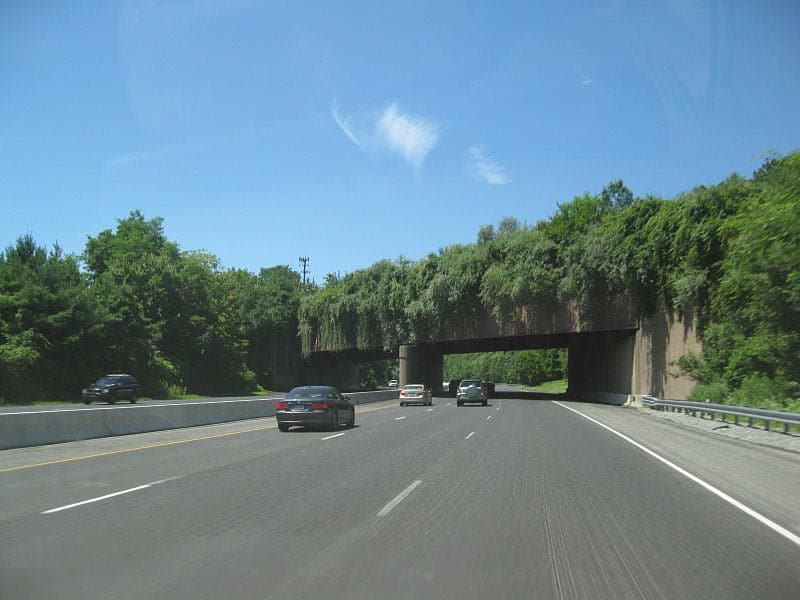 new jersey wildlife overpass