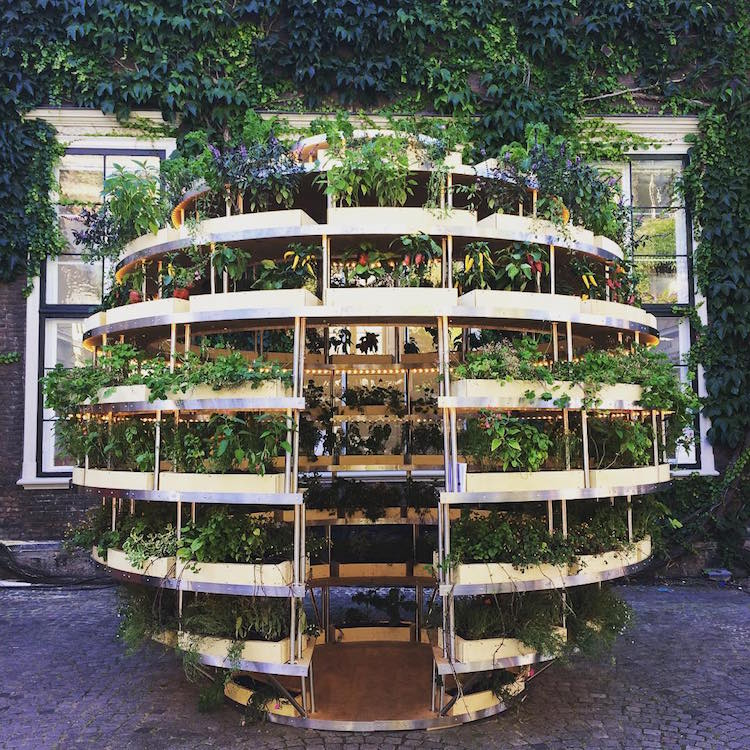 Ikea growroom instructions let you build your own diy - Giardino verticale ikea ...