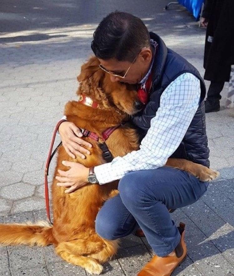 loubie hugging dog louboutina golden retriever