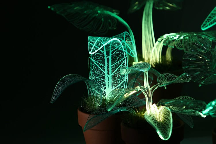Elegant LED Plant Lamps Modeled After Leafy Green Flora