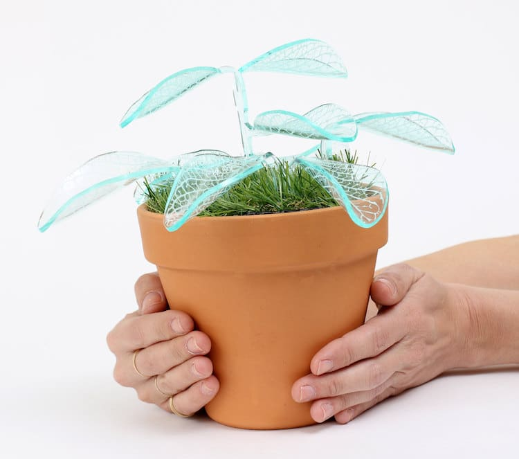 led plant lamp