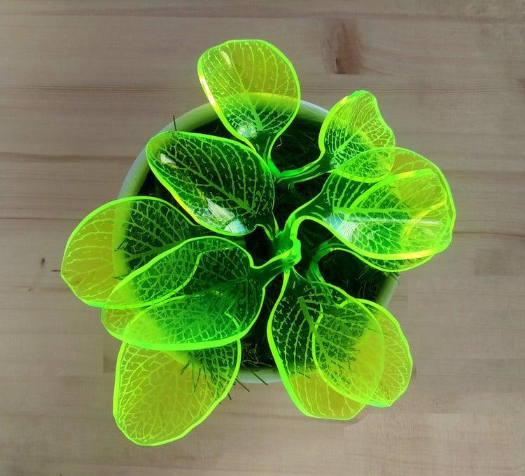 led plant lamps